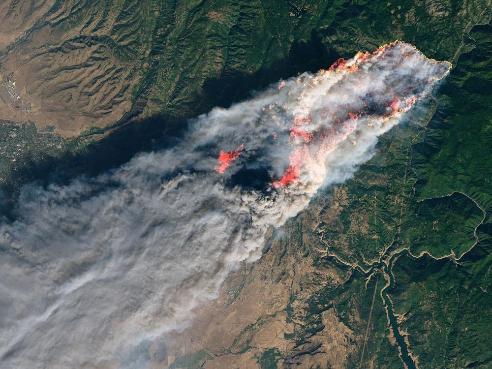 Aerial view of forest fire with streaming smoke