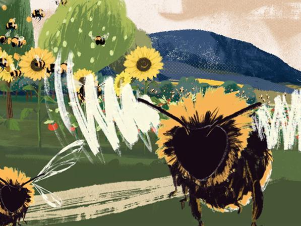 Protecting Pollinators Impact Campaign 2019