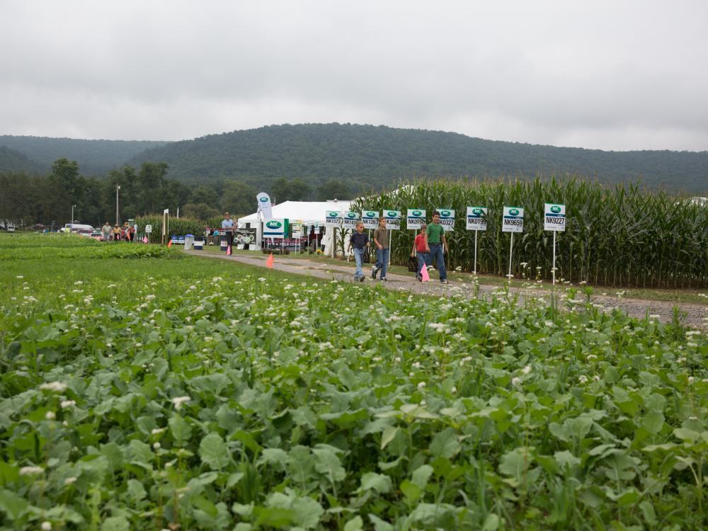 Crop exhibits Ag Progress Days