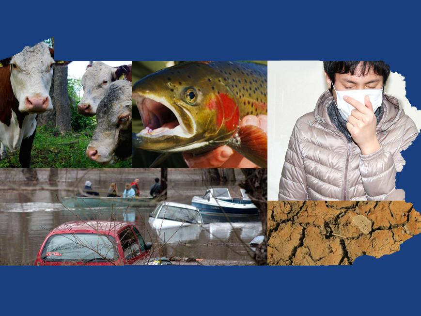 Image of climate effects in PA, flood, sickness, ag, fishing and drought.