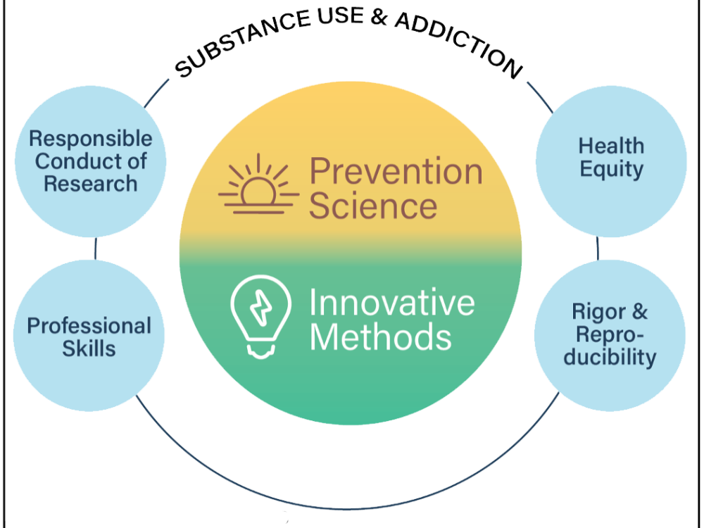 Focus areas of Penn State's Prevention and Methodology Training (PAMT) program
