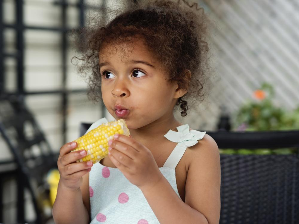 A young preschool-age girl eating corn on the cob