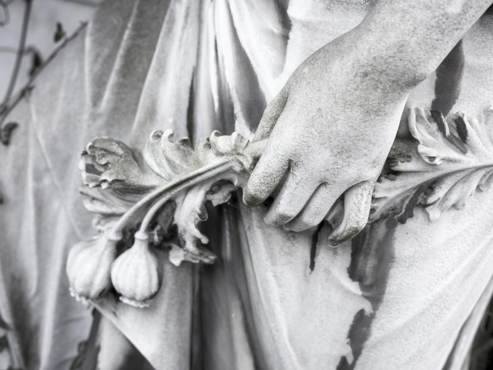 stone hand and poppy pods