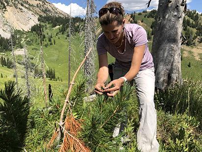 Erica Smithwick in Yellowstone