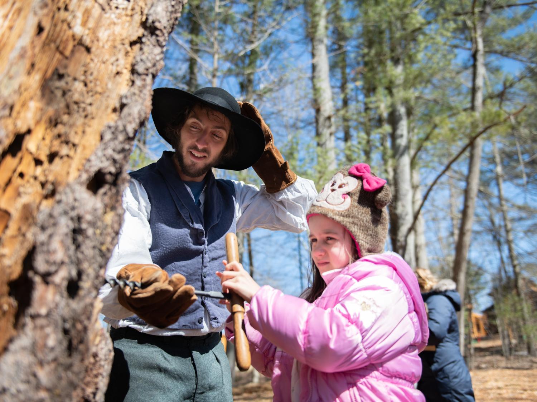 maple harvest festival
