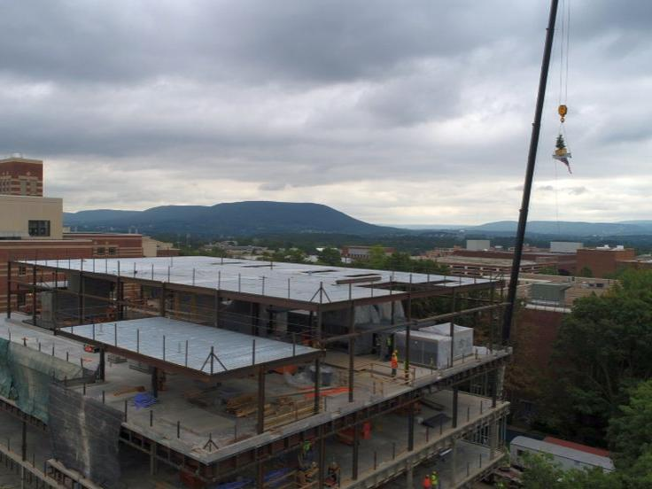 Animal Vet and Biomed Sci Bldg topping out