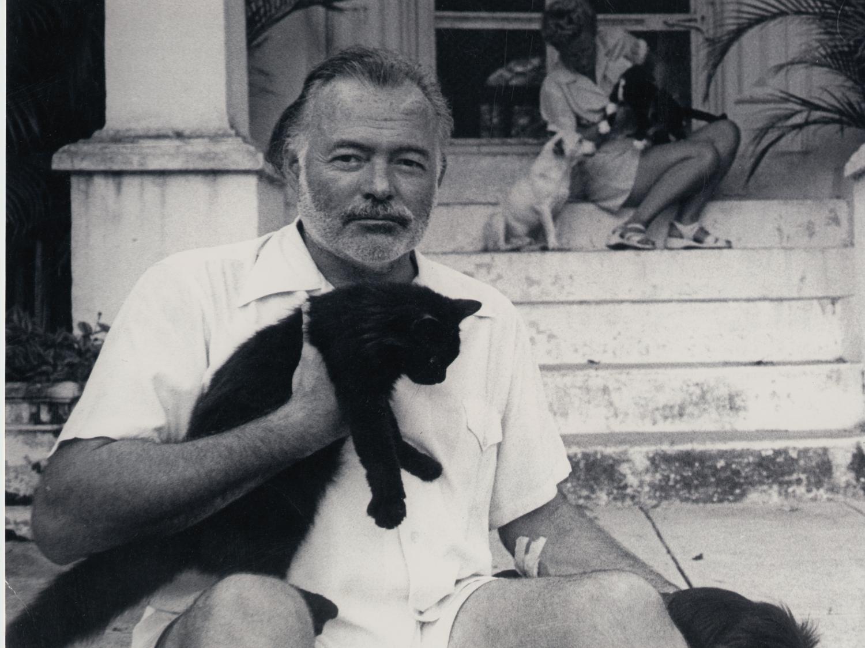 Ernest Hemingway holding a cat.