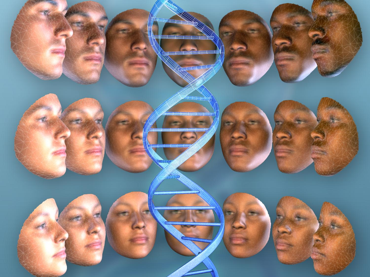 faces and DNA strand