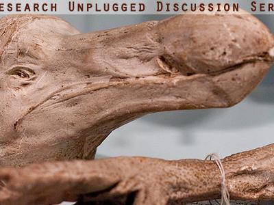 bones and skull from the now extinct dodo bird